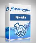 Legionella sp.